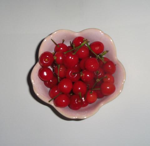 cherry140505.jpg